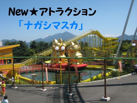 IMG_3996_1.jpg