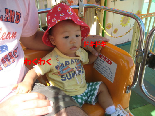 IMG_3997_1.jpg