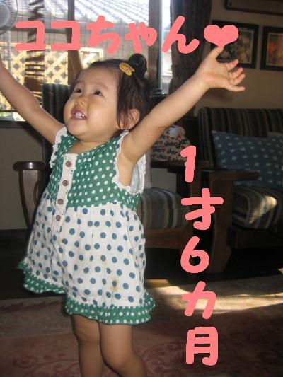 IMG_4199_1.jpg