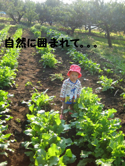 IMG_4365_1.jpg