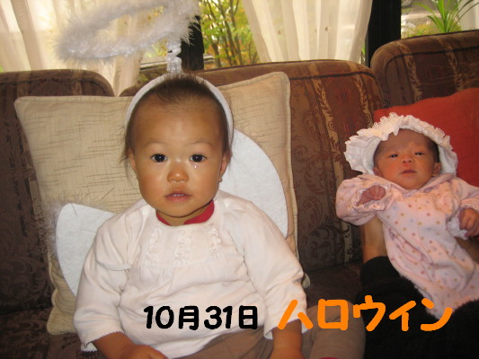 IMG_4408_1.jpg