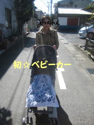 IMG_5005_1.jpg