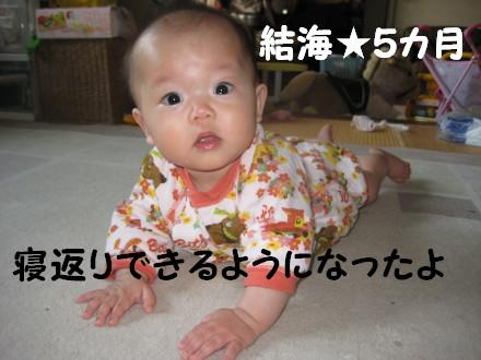 IMG_5356_1.jpg