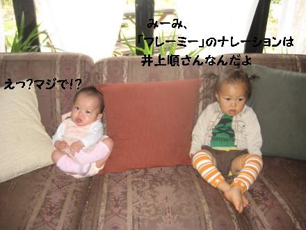 IMG_5373_1.jpg
