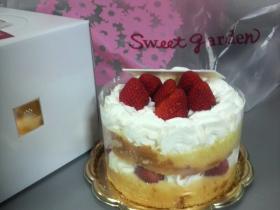 まぁるいケーキ