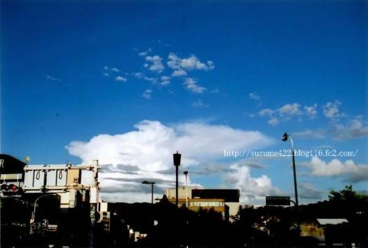 (10)_2009.jpg