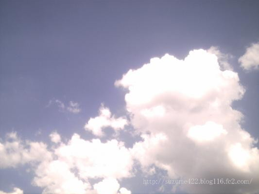 ICAM0003convert_20081127062704.jpg
