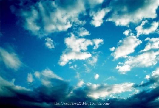 N019_2009.jpg