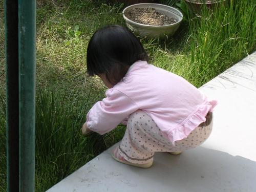 お庭遊びの姫