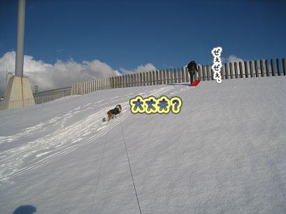 登っては滑り・・・