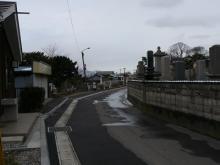 外人墓地の道