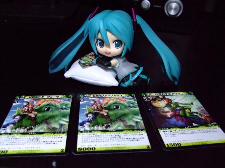 DSCF0418_convert_20081110020225.jpg
