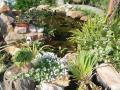 garden080625