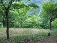 枕瀬山森林公園キャンプ場-6
