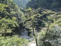祖谷渓キャンプ村-18