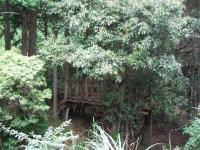 甫喜ヶ峰森林公園キャンプ場-23