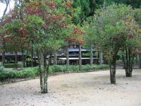 船津キャンプ場-17