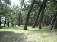 種崎千松公園-08