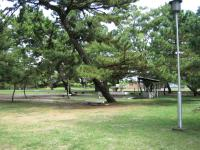 種崎千松公園-09