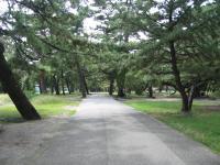 種崎千松公園-11