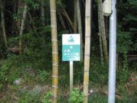 越知町・小浜キャンプ場-3