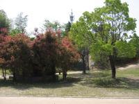 蜂ヶ峯総合公園-10