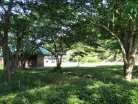 萩阿武川温泉キャンプ場-33
