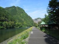 萩阿武川温泉キャンプ場-24