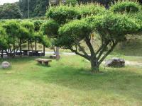 萩阿武川温泉キャンプ場-18