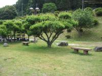 萩阿武川温泉キャンプ場-19