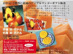 mango2009_vtm