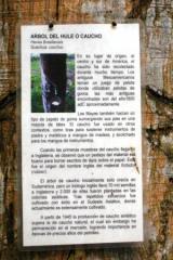 choco3_20090604092015.jpg