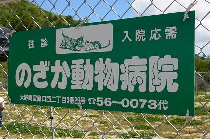 のざか動物病院