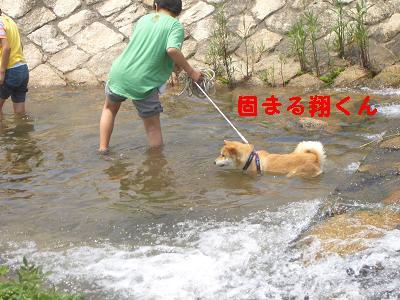 お水はいやなのに~