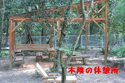 木陰の休憩所