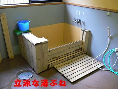 立派な湯船
