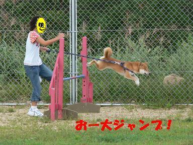 おー大ジャンプ!