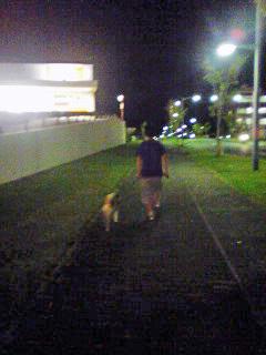 兄ちゃんとお散歩♪