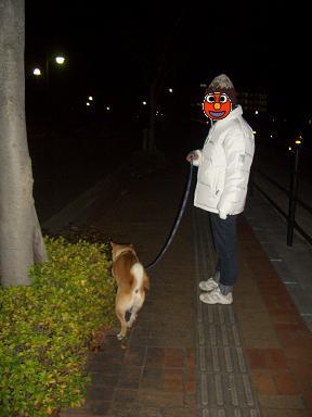 お散歩で~す。
