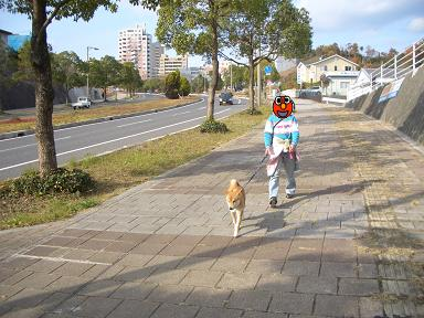 さぁ~ お散歩!