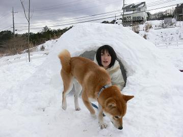 中は寒いの!