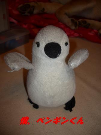 ぼく・ペンギン!