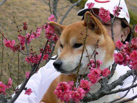 う~ん 春だね~!
