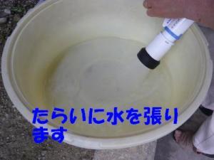 P1010655_convert_20080616222224x