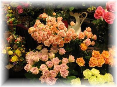 2011年11月12日お花屋さんの店先