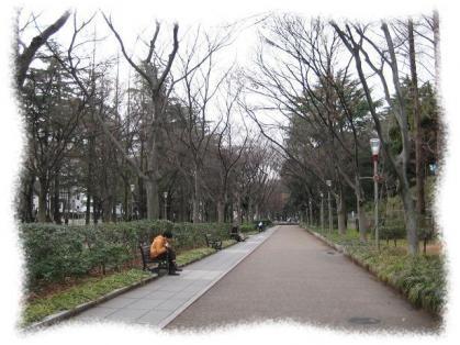 2012年3月17日靭公園