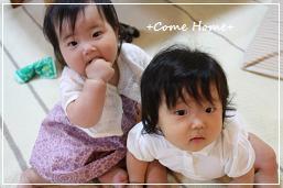 yuraraのお友達