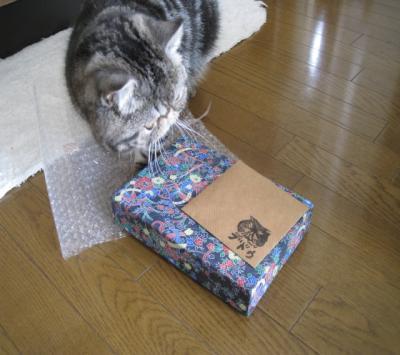 ぶどうちゃんのプレゼント1