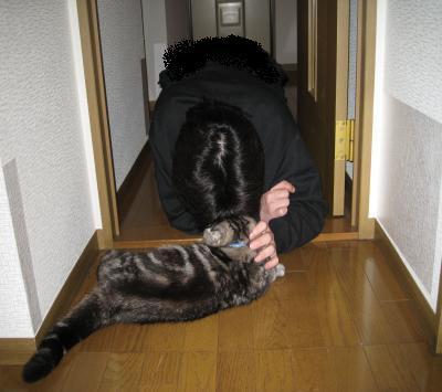 ぶりたの訓練7