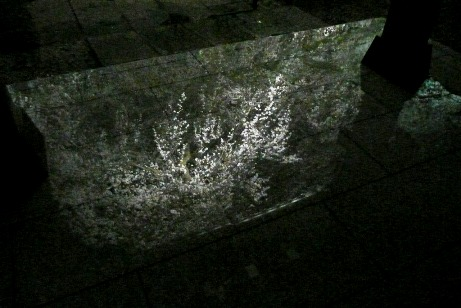 御影石に映し出された枝垂桜